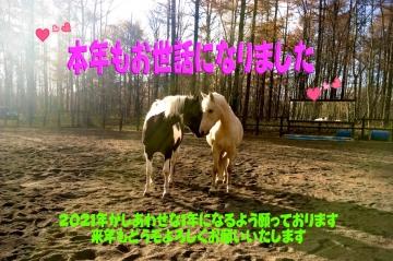 Image006_20201231132201